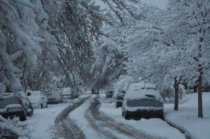 Snowday 2010